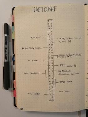 Timeline - bullet journal