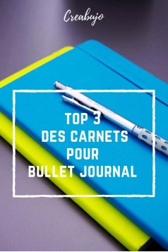 Top 3 - carnet - bujo