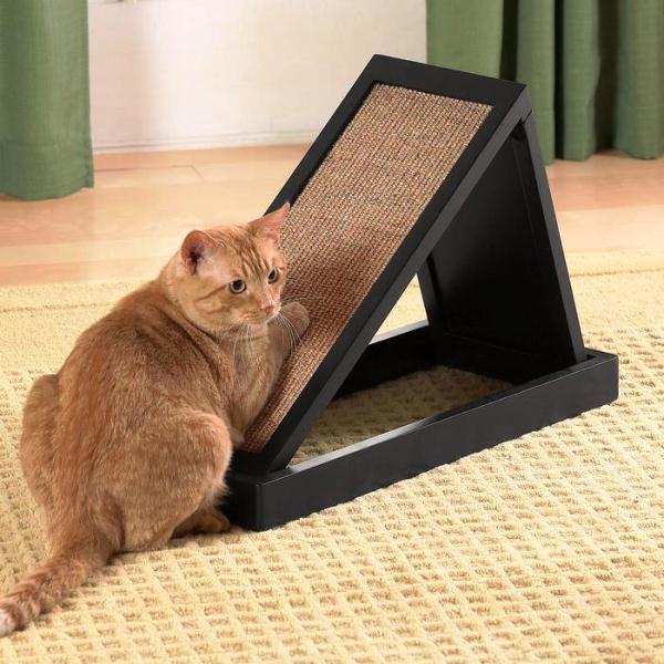 debela plijen maca