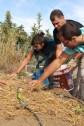 Curso de Huerta Ecológica