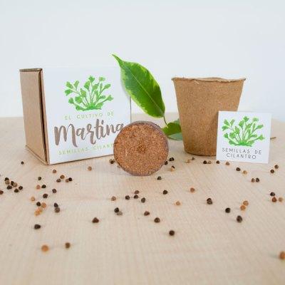 kit-cultivo-semillas-cilantro