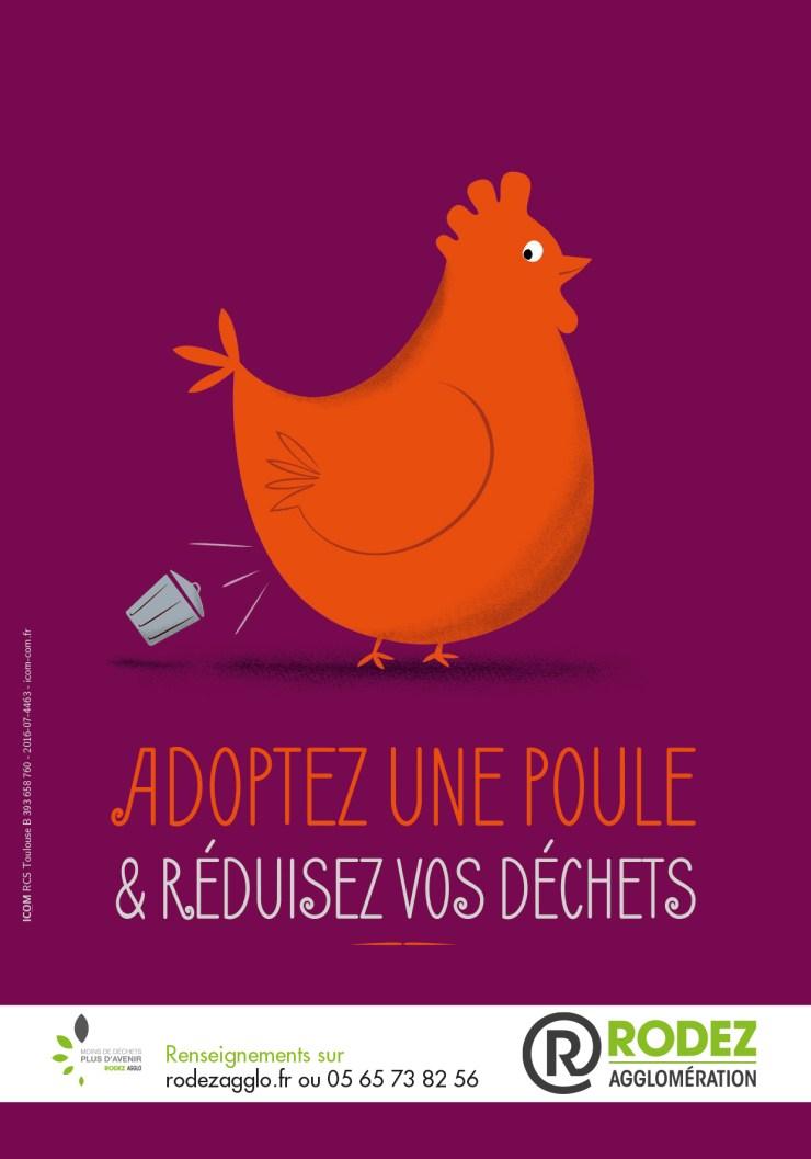 Adoptez une poule et réduisez vos déchets