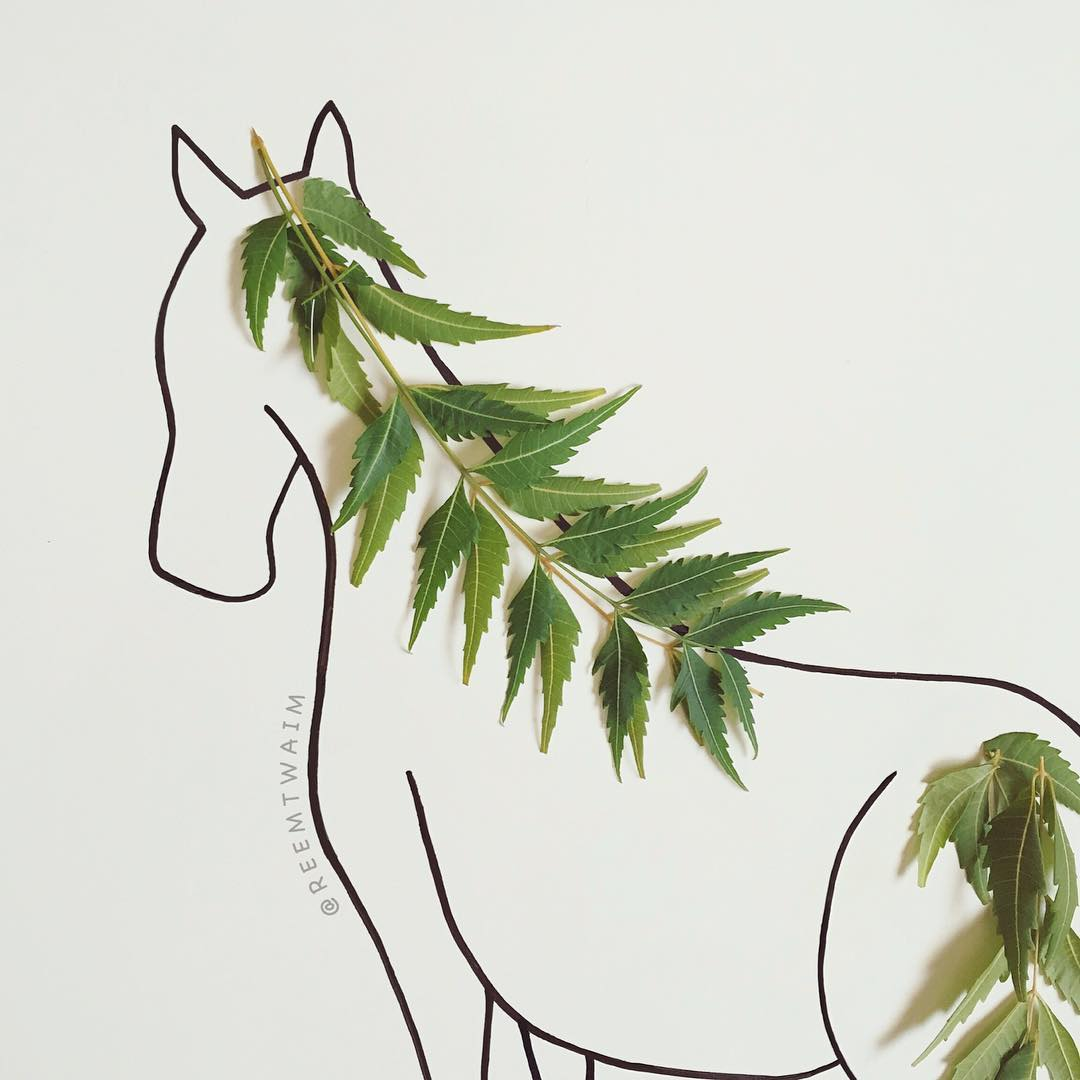 Reem Altwaim crée des illustrations avec des objets du quotidien