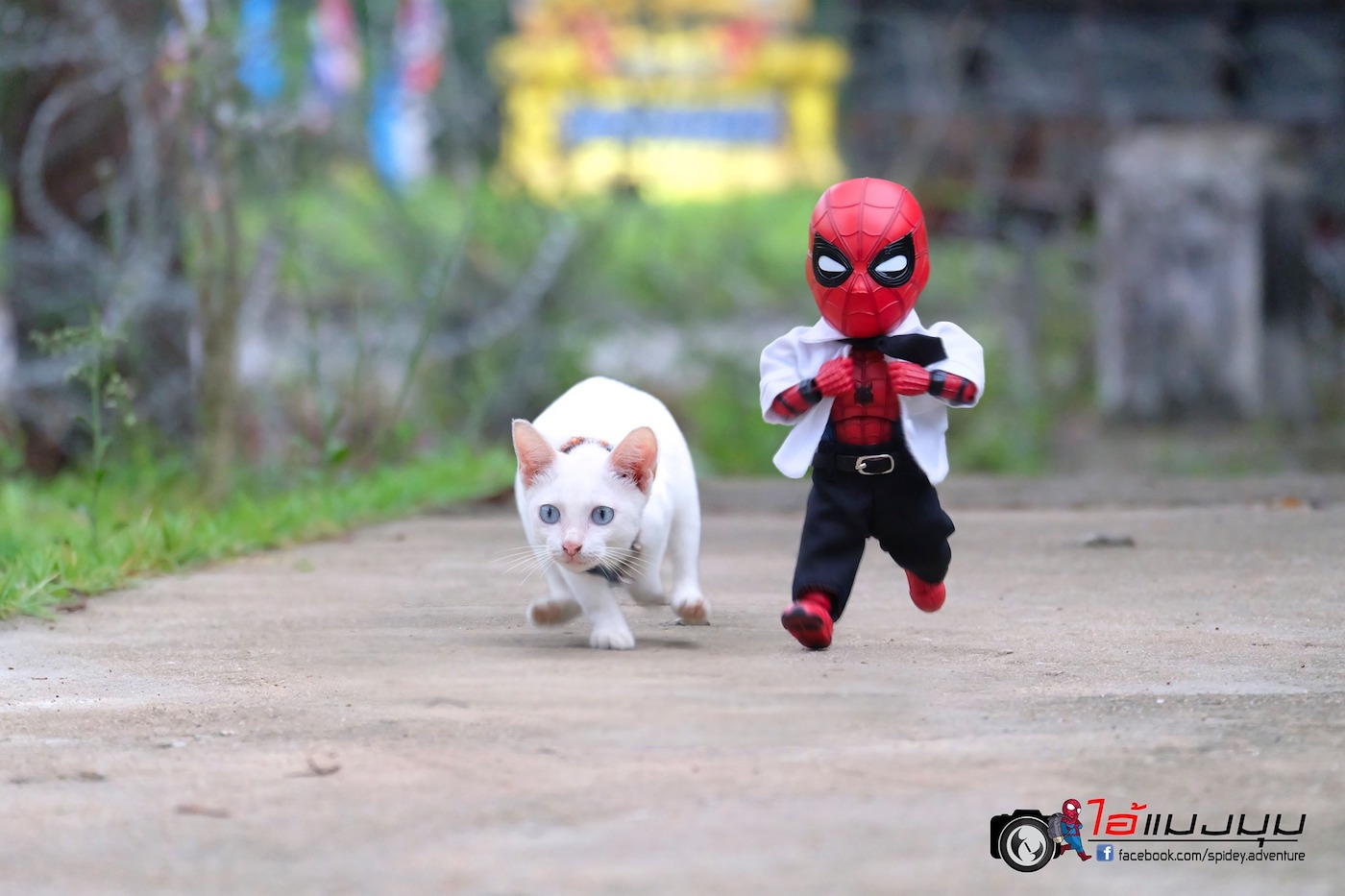 https://i1.wp.com/creapills.com/wp-content/uploads/2019/11/figurine-spiderman-chat-21.jpg?w=1400&ssl=1