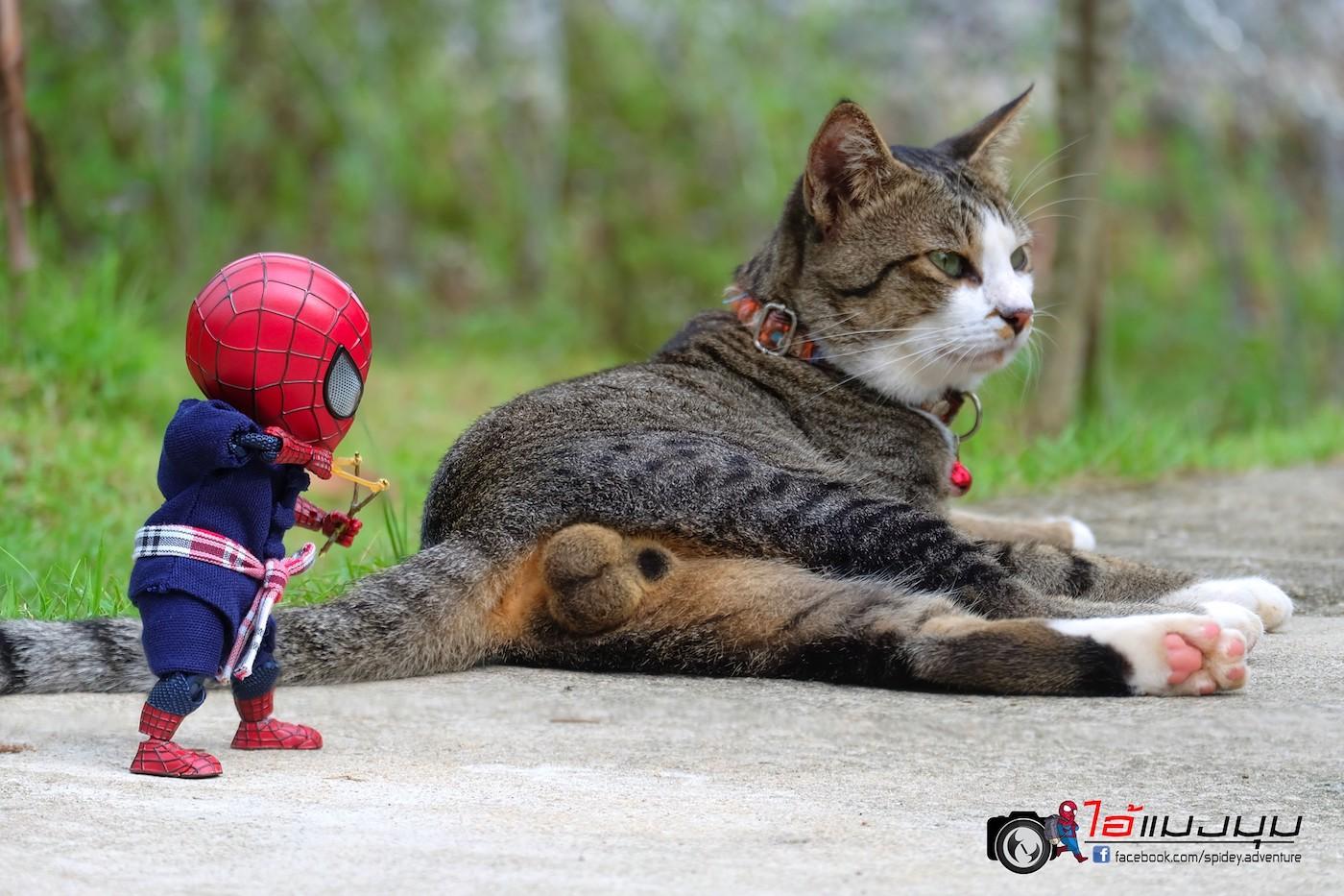 https://i1.wp.com/creapills.com/wp-content/uploads/2019/11/figurine-spiderman-chat-23.jpg?w=1400&ssl=1