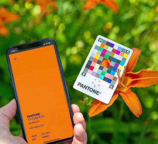 Pantone Color Match Card : la carte Pantone qui capture les couleurs dans le monde réel