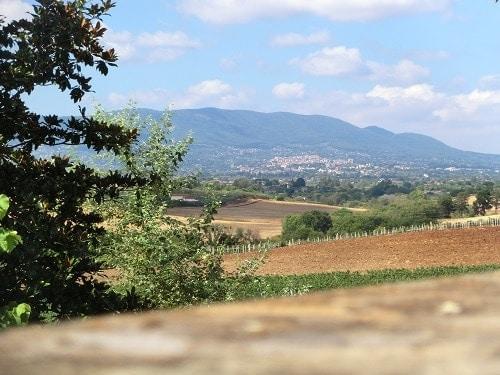 Southern Italian Landscape