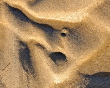 sand 2 for web