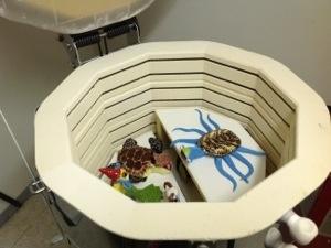 Roll a Beast Ceramic Art Project