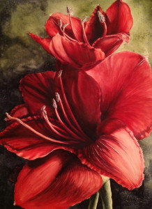 Amaryllis by Michelle East