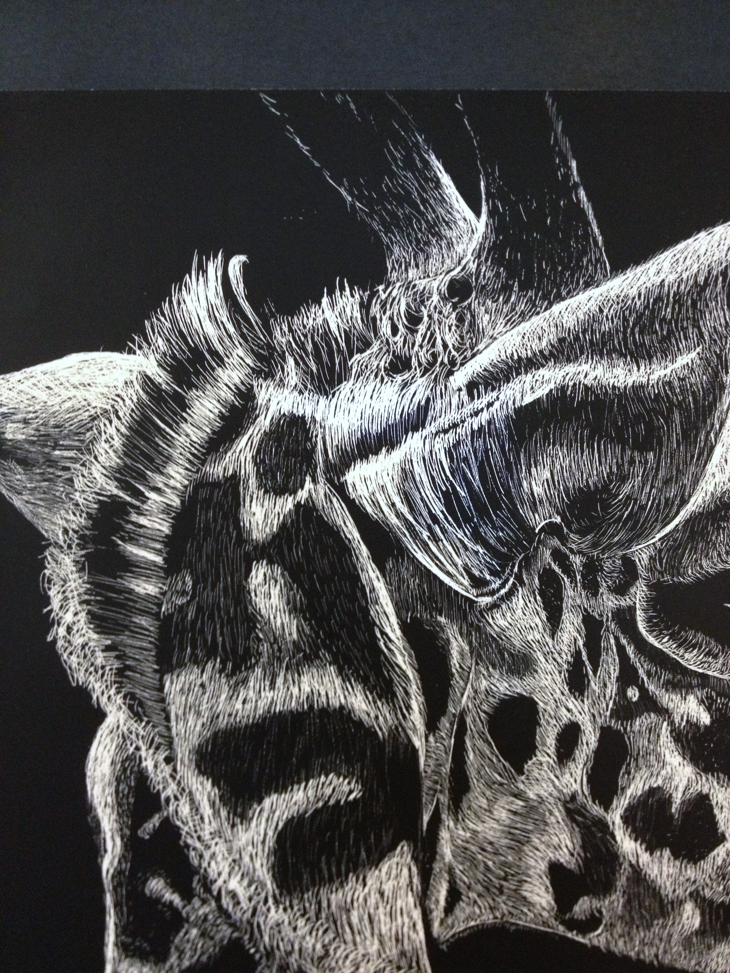 Scratchboard 13 Hs Scratch Art Lesson Scratch Board Value