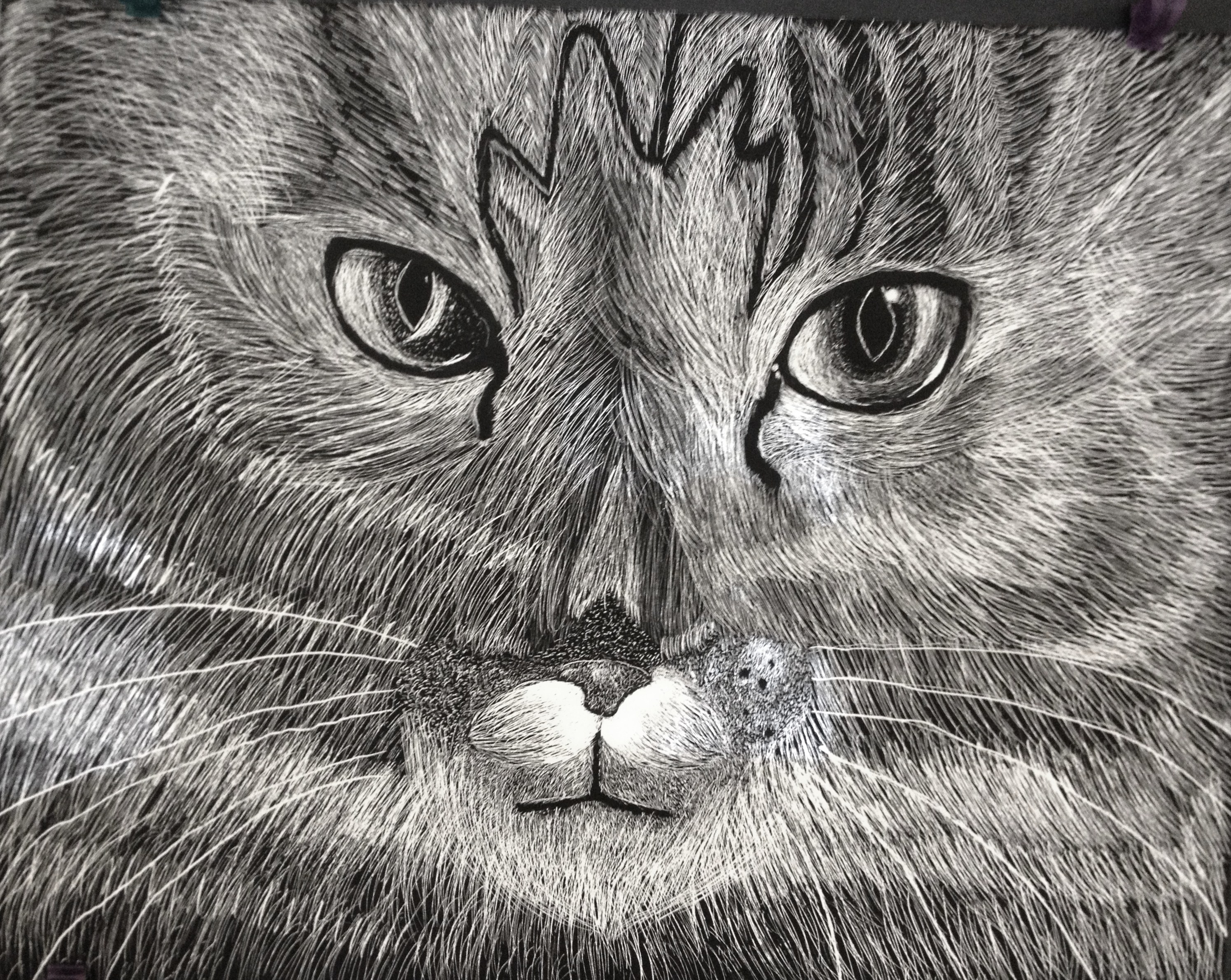 Hs Scratch Art Lesson Scratchboard