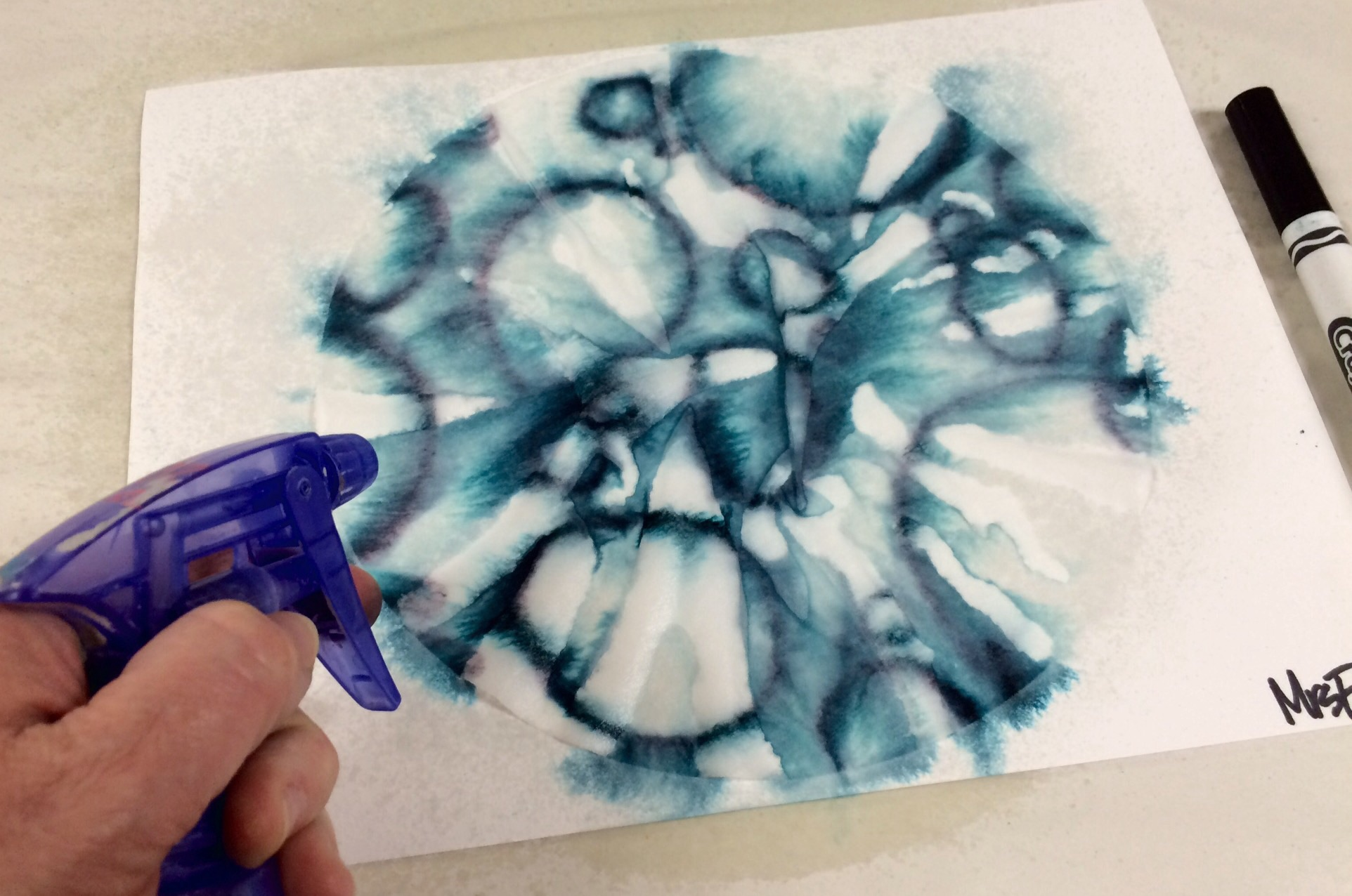 Marker And Coffee Filter Sihouette Art Lesson