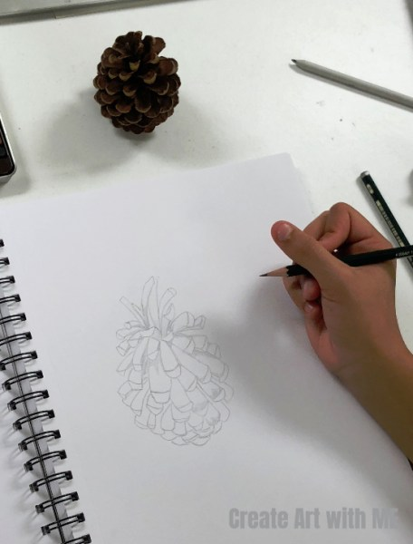 Pine Cone Sketchbook Assignment idea
