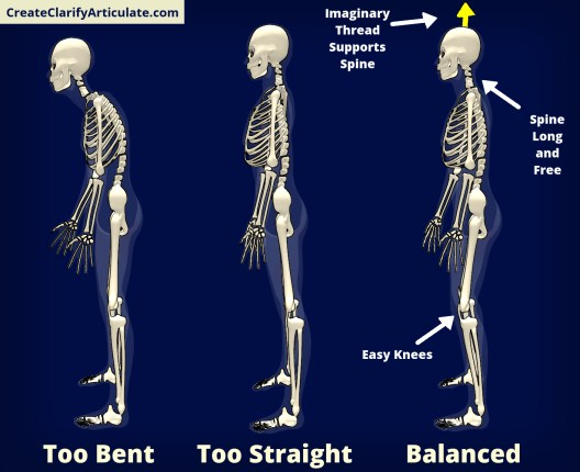 Healthy Spine Position
