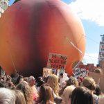 Roald Dahl's Giant Peach