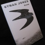 Book - Cove by Cynan Jones