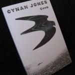 Book - Cove by Cynan Jones