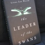 The Leader of The Swans