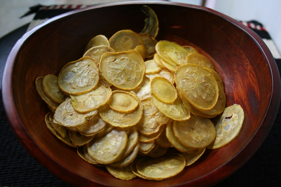 Salt and Vinegar Squash Chips (raw, vegan, gluten free) - These healthy crispy chips are a great alternative to potato chips. Great for gardeners who want to use up a bunch of squash!