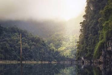 Umwelt Natur Vegan See