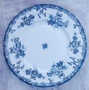 plate 1