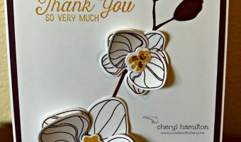 SSINK: A Show of Gratitude,  Thank You Cards
