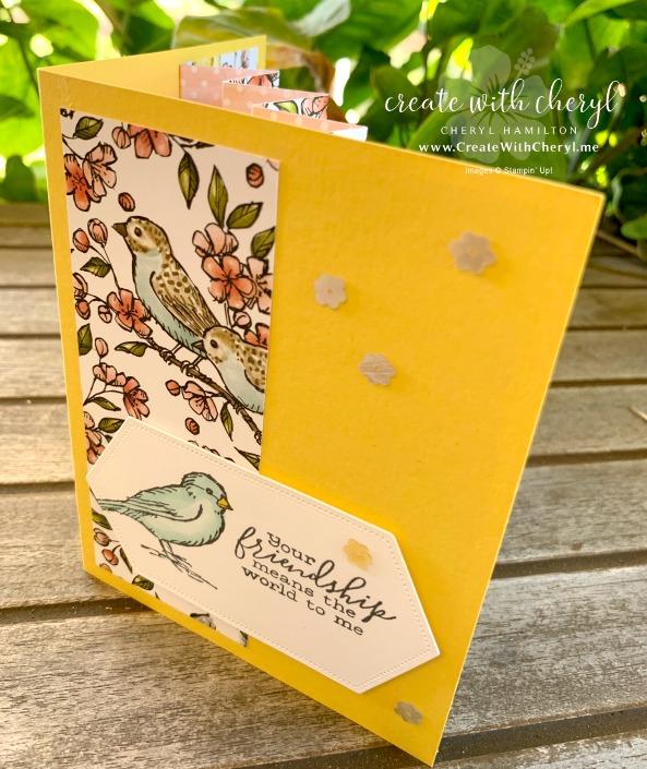 #createwithcheryl #cherylhamilton #birdballad #funfoldcards #accordionfoldcard