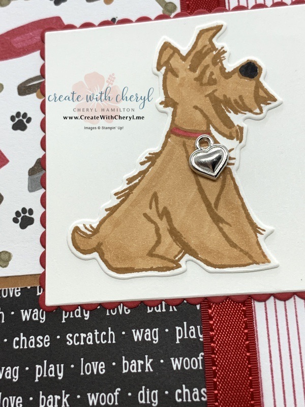 Pampered Pets Card