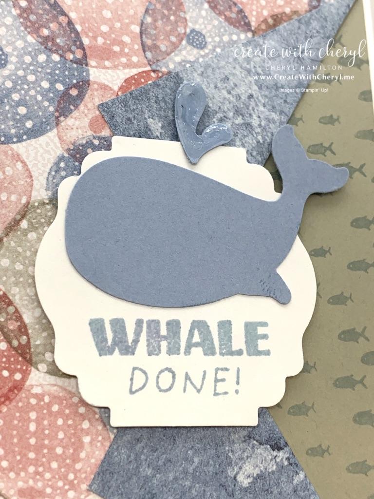 Whale Done Collar Fold Card