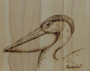 Pelican Project Image