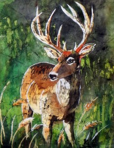 White-Tailed Buck Project Image