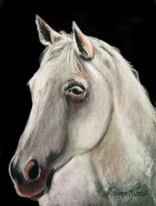 White Stallion Project Image