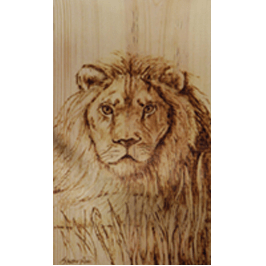 a lion icon with transparent background