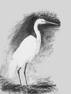 Stork Project Image