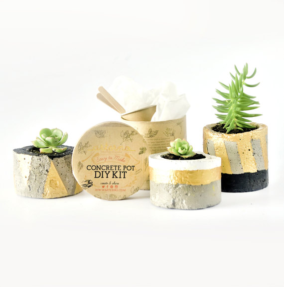 13 Modern DIYs to Try: DIY Kit Concrete Pot