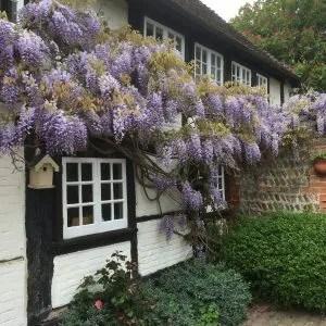 Decoy Ponds Sussex wedding venue celebrant Claire Bradford