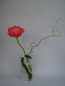 The simplicity of ikebana sogetsudc