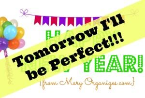 Tomorrow I'll Be Perfect