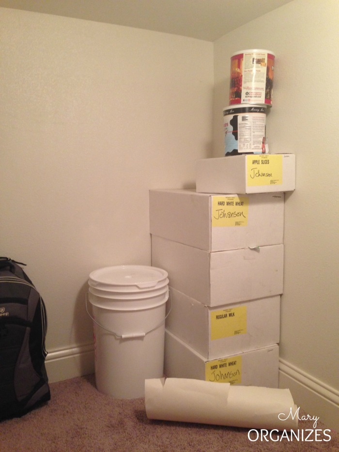 BEFORE Pic - The back corner of the closet under the stairs
