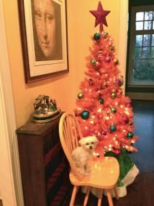 Christmas Tree 64