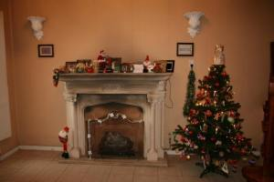 Christmas Tree 67