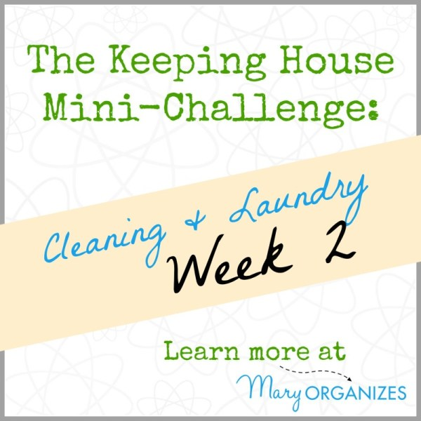 Week 2 of Cleaning and Laundry (The Keeping House Mini-Challenge)