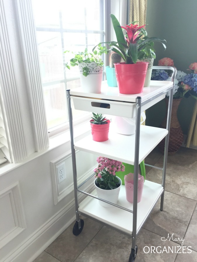 My Indoor Garden Cart