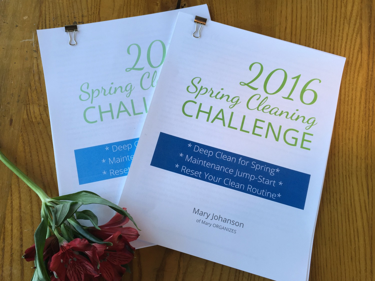 Spring Cleaning Challenge - 2016