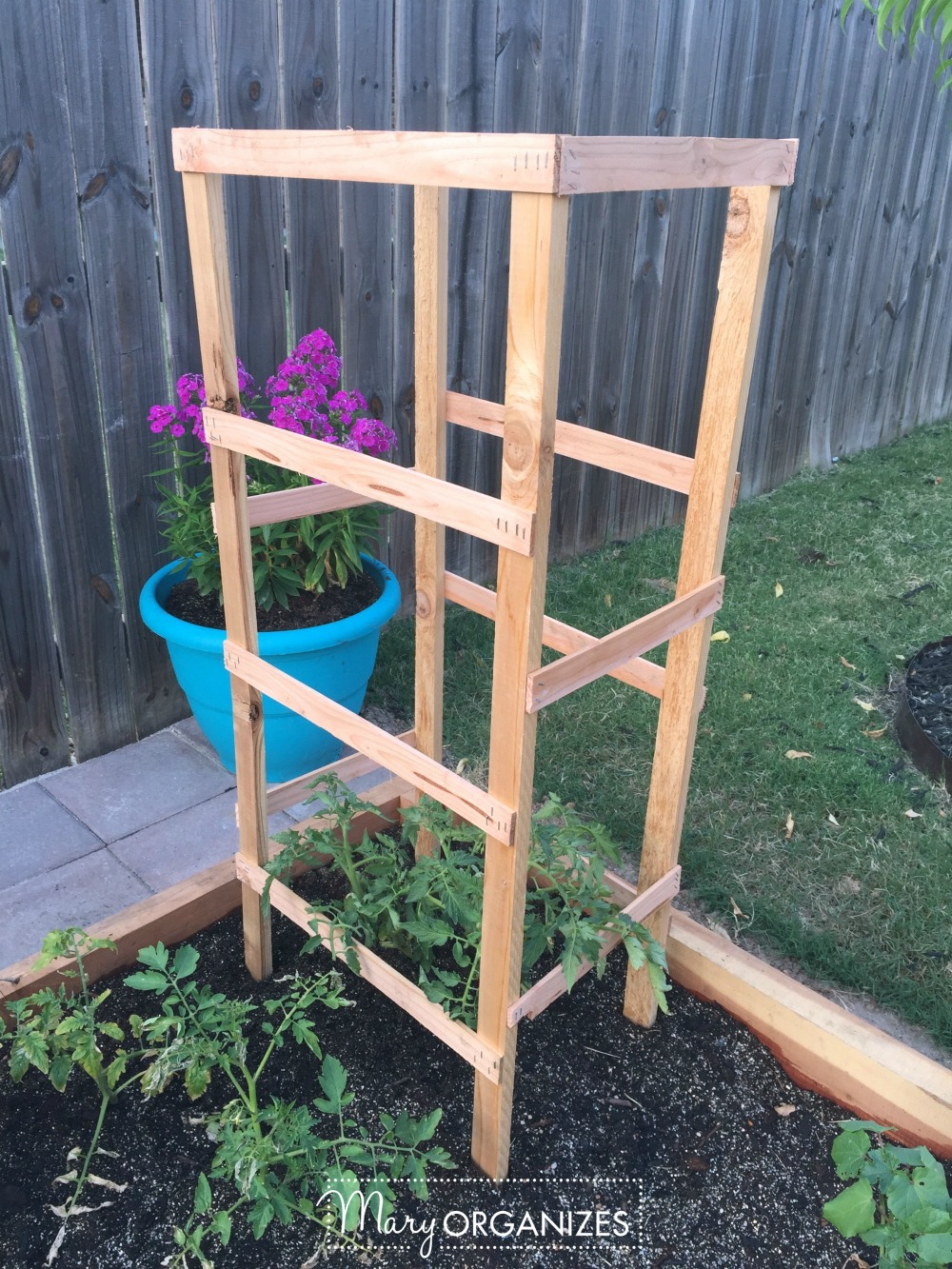 DIY Tomato Cage Tutorial for the Organic Garden 1