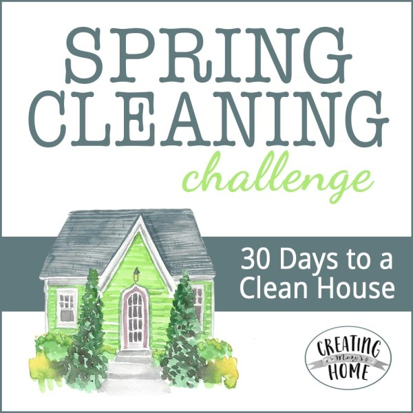 2018 Spring Cleaning Challenge