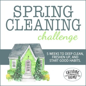 2019 Spring Cleaning Challenge