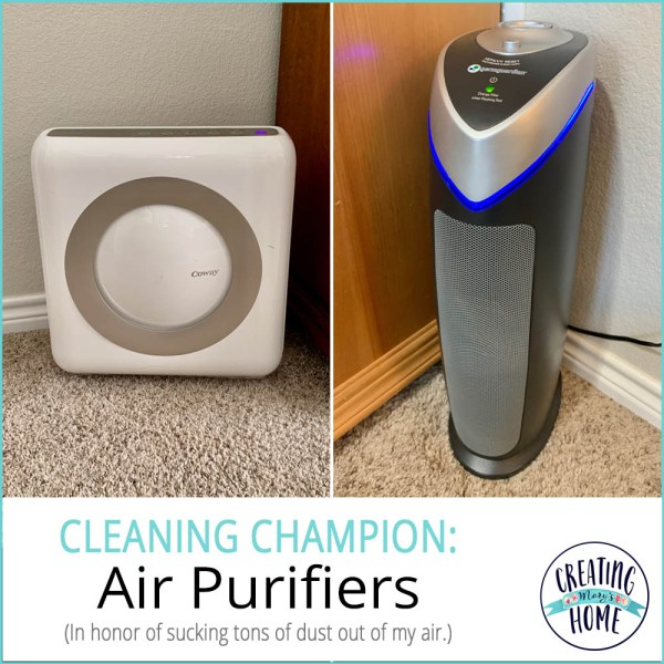 Cleaning Champion: Air Purifiers