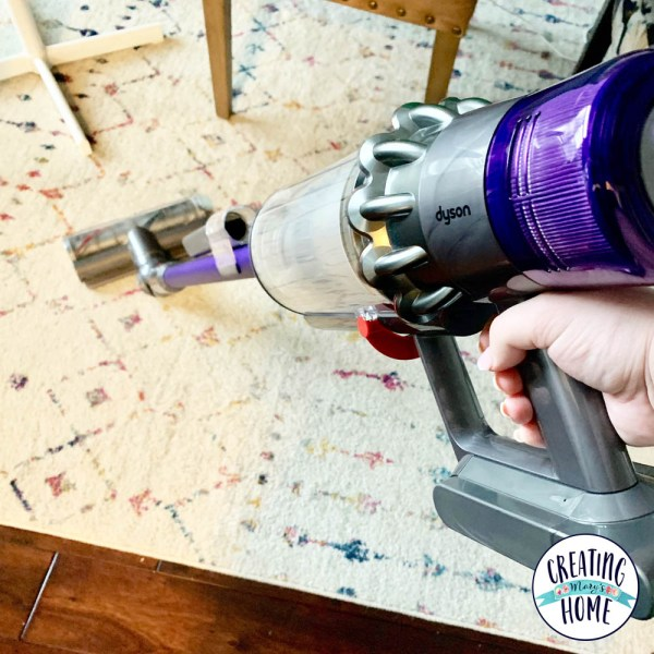 Cleaning Champion: Dyson v11 animal